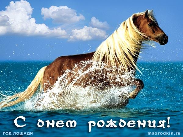 Открытки на день рождения с лошадью 789